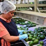 Empreendedor em debate: o desafio da economia inclusiva e social