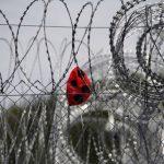 Cardeal Tagle: mudar de mentalidade para humanizar fenômeno das migrações