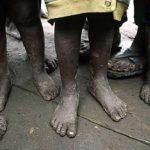 Mensagem para Dia Mundial dos Pobres será apresentada amanhã